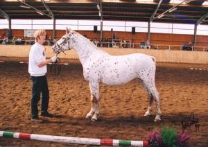 Bonnie Bundeszuchtsschau 2004